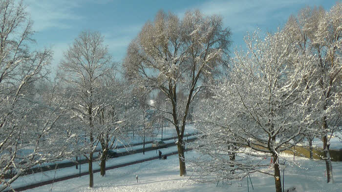 Winterplaatjes 2010